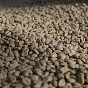 Bolivia Calama Co2 Decaf